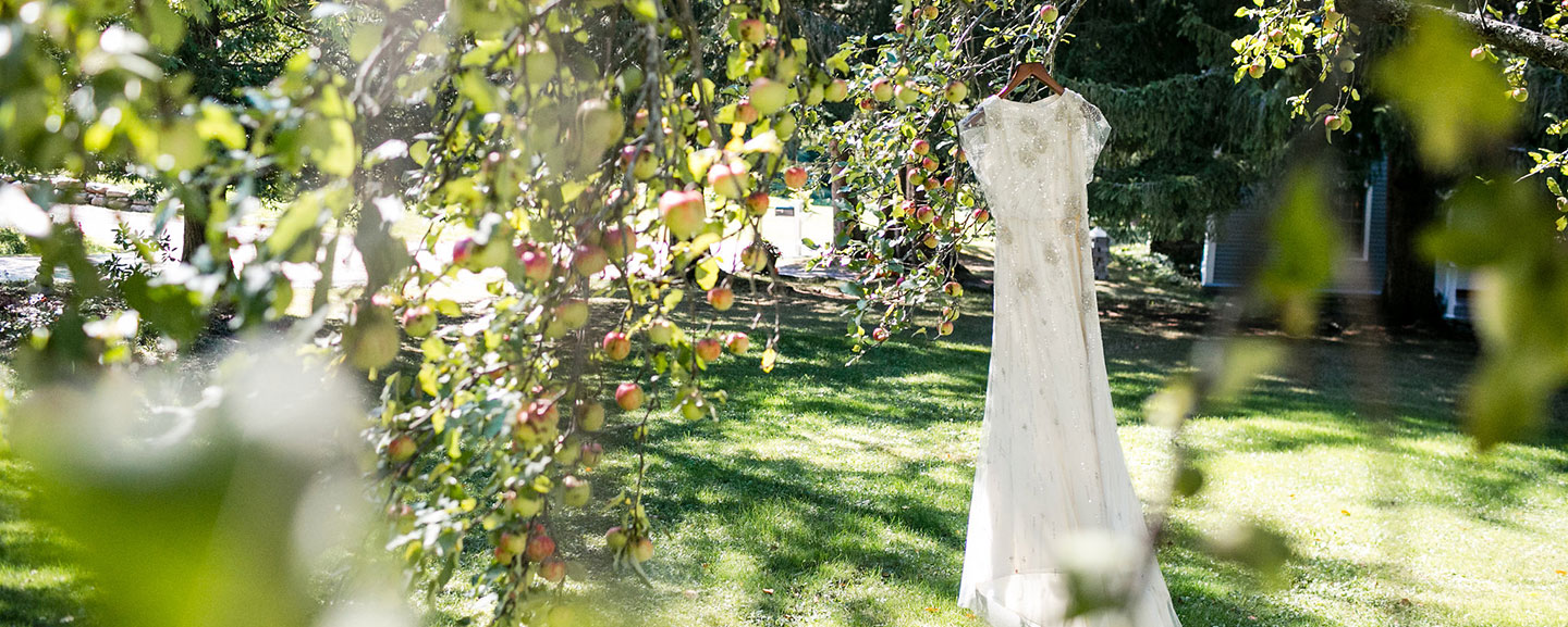 Elope in Vermont - dress