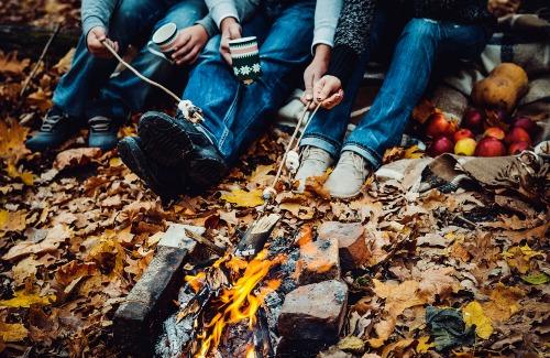Fall Foliage VT